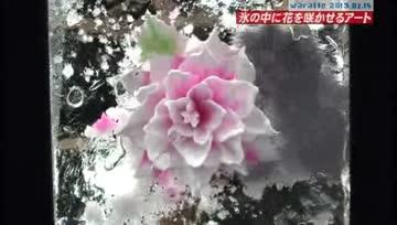 iitomo: Katori Shingo Ice Drill Art
