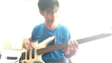 Crossfaith - Wildfire Bass cover By PaLm