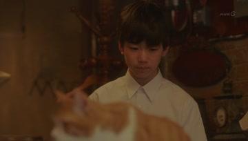 ผ้าห่มแมว ตอน 4